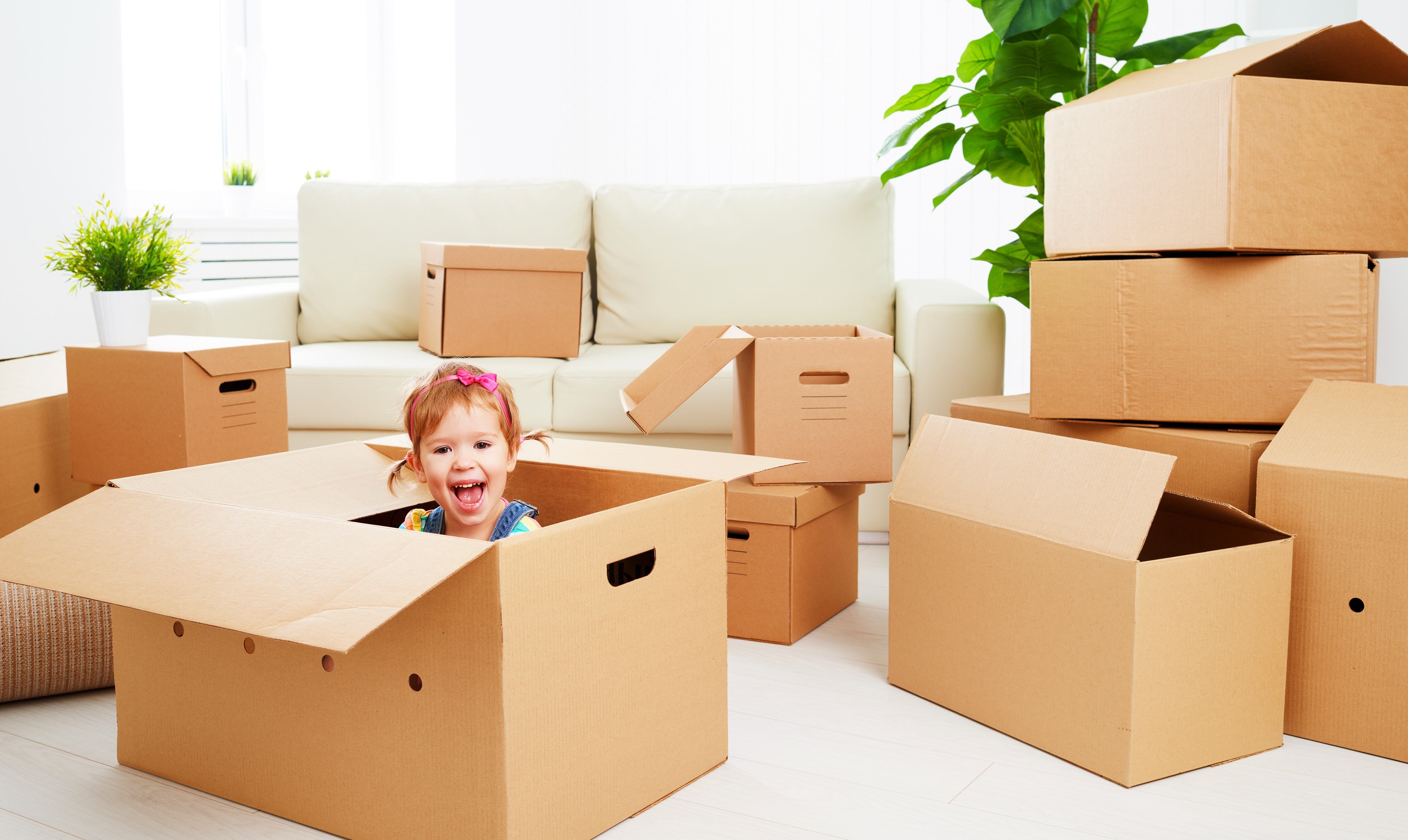 Moving house? We've got some handy hints!